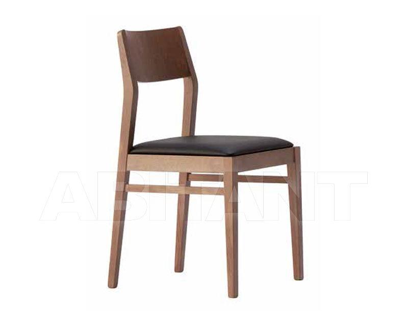 Buy Chair Domus Mobili 2018 6867