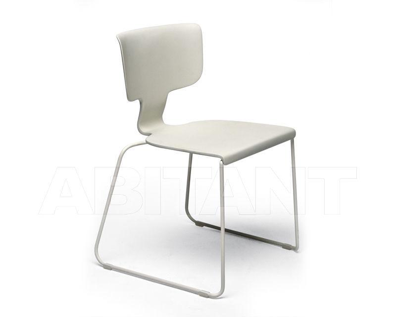Buy Chair CORAL REEF Roberti Rattan 2020 9860FA