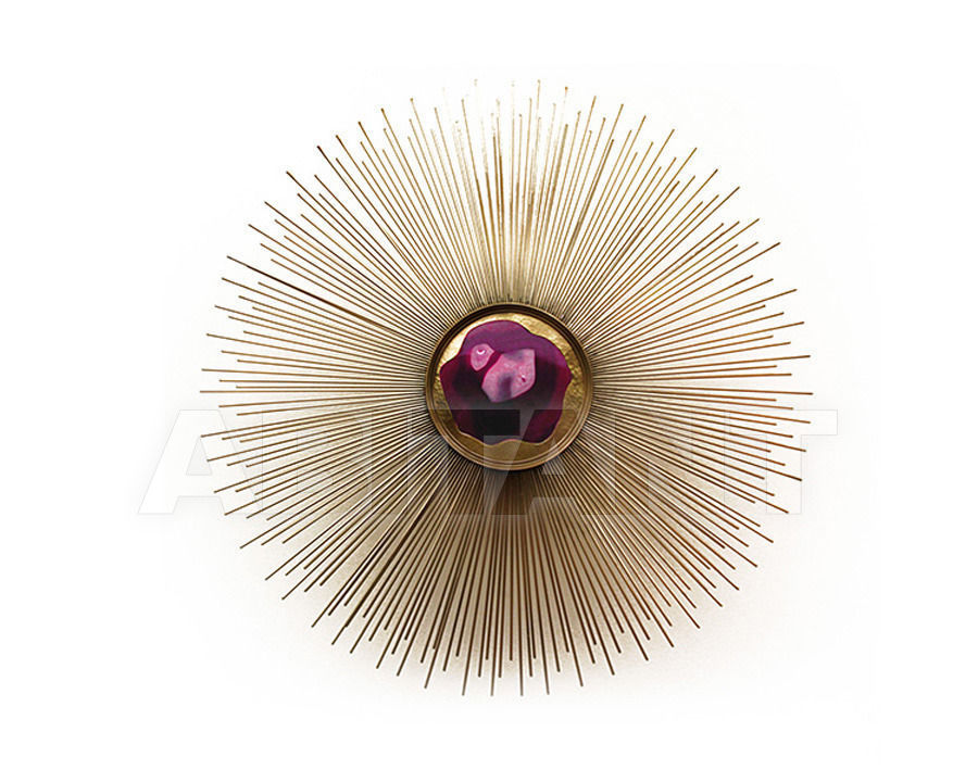 Buy Wall light Koket by Covet Lounge 2014 BRILLIANCE 3